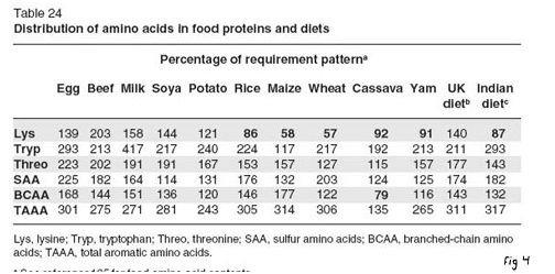 amino acids table